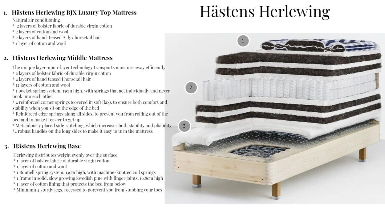 Hastens Herlewing